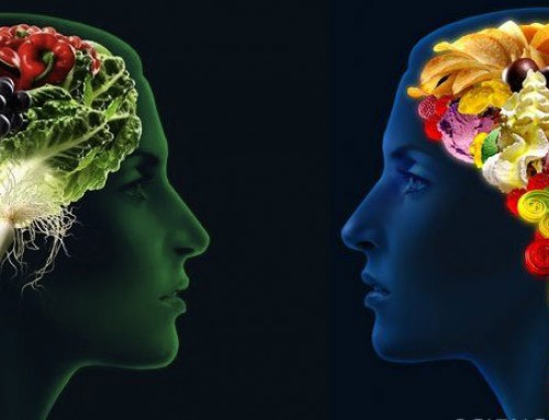 Super Brain Foods & The Effects of Nutrients on Brain Function